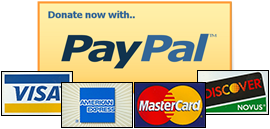 paypal-button2